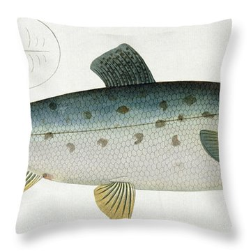 Salmon Throw Pillow by Andreas Ludwig Kruger