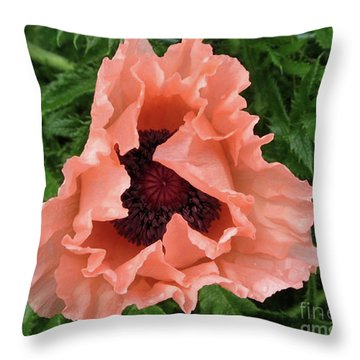 Salmon Colored Poppy Throw Pillow by Barbara Griffin