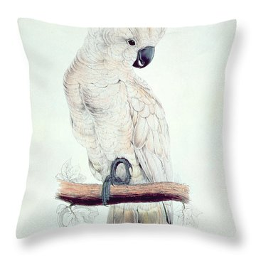 Salmon Crested Cockatoo Throw Pillow by Edward Lear