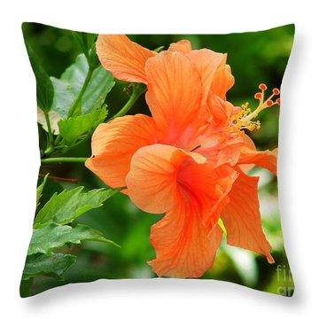 Salmon Hibiscus Throw Pillow by Lew Davis