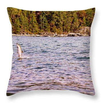 Salmon Jumping In The Ocean Throw Pillow by Peggy Collins