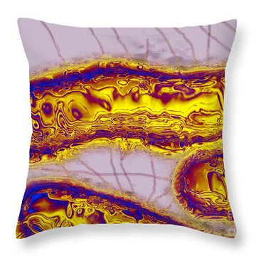 Salmonella Bacterium Throw Pillow by James Cavallini