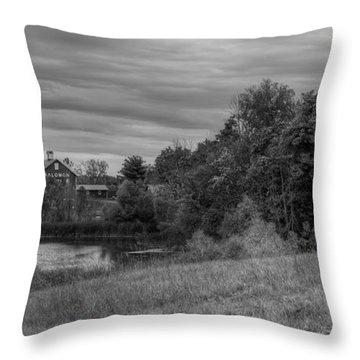 Salomon Farm In The Fall Throw Pillow