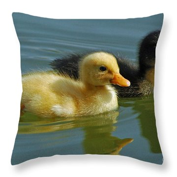 Throw Pillow featuring the photograph Salt And Pepper by Olivia Hardwicke