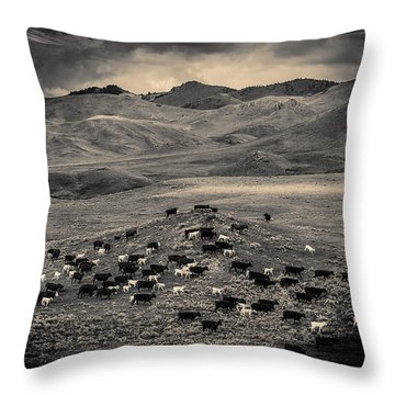 Salt And Pepper Distressed Throw Pillow