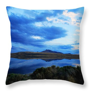 Throw Pillow featuring the photograph Salt Lake Antelope Island by Matt Harang