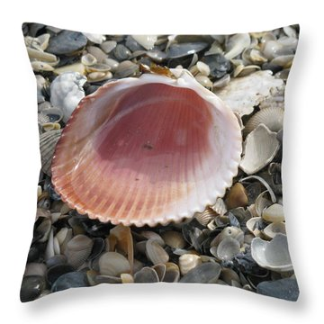 Salt Water Cockle Throw Pillow by Ellen Meakin