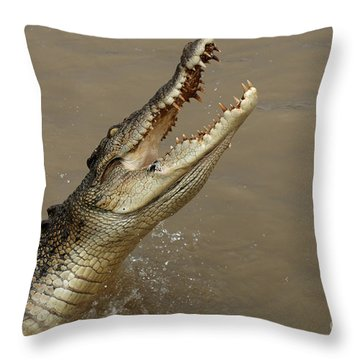 Salt Water Crocodile Australia Throw Pillow by Bob Christopher