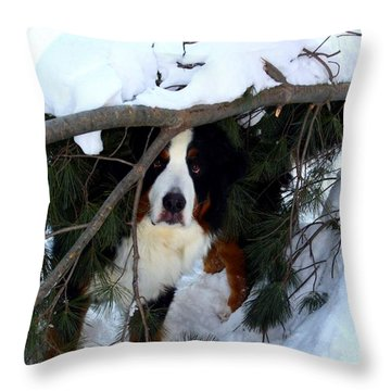 Sam And His Fort Throw Pillow by Patti Whitten