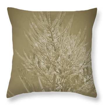 Throw Pillow featuring the photograph Samantha by Elaine Teague