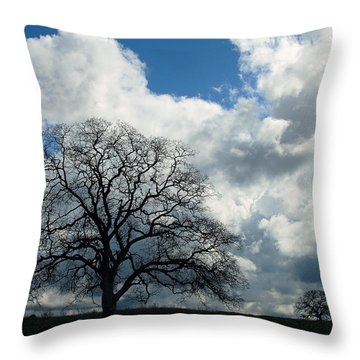 Same Tree Many Skies 13 Throw Pillow