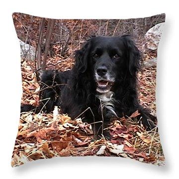 Sammi Smiling In Leaves Throw Pillow by Randi Shenkman