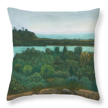 San Elijo Lagoon Throw Pillow
