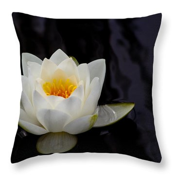 San Francisco Water Lily Throw Pillow by Bruce Lundgren