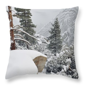 Throw Pillow featuring the photograph San Jacinto Winter Wilderness by Kyle Hanson
