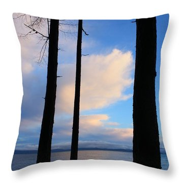 San Pareil Shore Throw Pillow by Gerry Bates