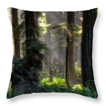 Sanctuary 2 Throw Pillow