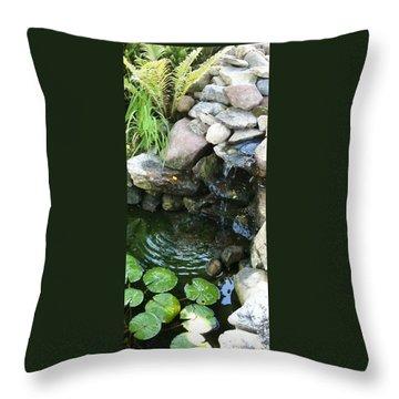 Sanctuary Throw Pillow by Debbie Finley