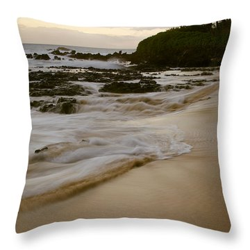 Sanctuary Throw Pillow by Sharon Mau