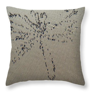 Natures Art - Dragonfly Sand Pattern Throw Pillow