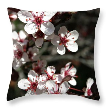 Throw Pillow featuring the photograph Sand Cherry by Henry Kowalski
