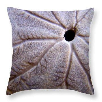 Sand Dollar 2 Throw Pillow by Vicki Maheu
