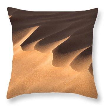 Sand Dune Detail Throw Pillow