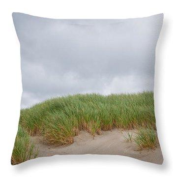 Sand Dunes And Grass Throw Pillow