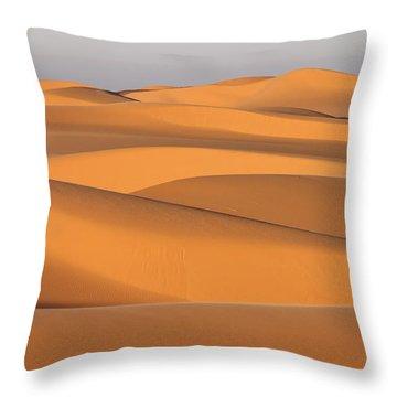 Sand Dunes In The Sahara Desert Throw Pillow by Robert Preston