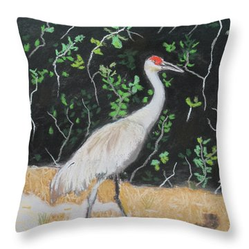 Sand Hill Crane Walking The Sands Of Seminole Forest Throw Pillow