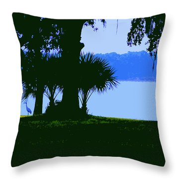 Sand Hill Cranes On Shore Throw Pillow