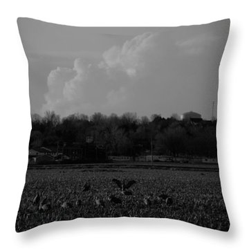 Sand Hill Cranes With Nebraska Thunderstorm Throw Pillow