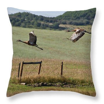 Sand Hill Lift Off Throw Pillow by Daniel Hebard