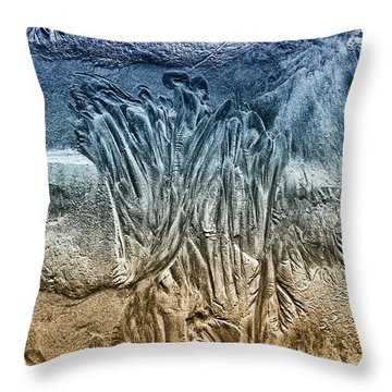 Sand Patterns Throw Pillow by Geraldine Alexander