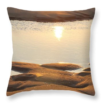 Throw Pillow featuring the photograph Sand Shine by Robert Banach