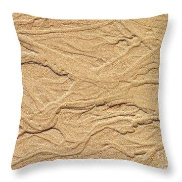 Sand Texture  4 Throw Pillow