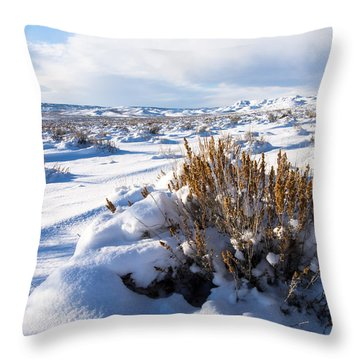 Sand Wash Basin In The Winter Throw Pillow