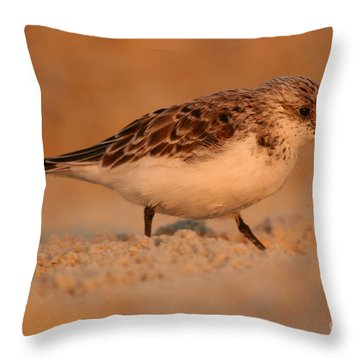 Throw Pillow featuring the photograph Sanderling Sunrise by John F Tsumas