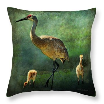 Sandhill And Chicks Throw Pillow by Barbara Chichester