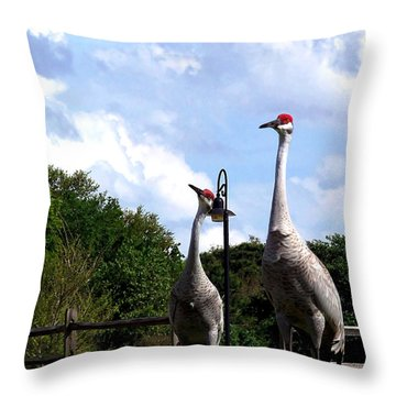 Sandhill Crane 009 Throw Pillow