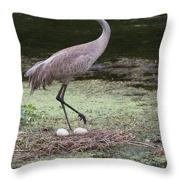 Sandhill Crane And Eggs Throw Pillow