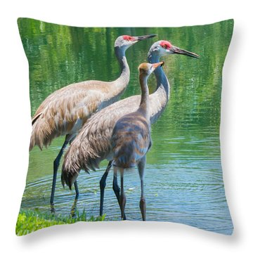 Mom Look What I Caught Throw Pillow by Susan Molnar