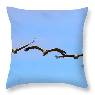 Sandhill Crane Flight Pattern Throw Pillow by Mike Dawson