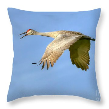 Throw Pillow featuring the photograph Sandhill Crane In Flight by Myrna Bradshaw