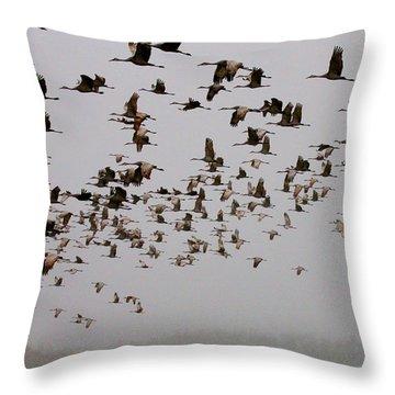 Sandhill Crane Migration Throw Pillow
