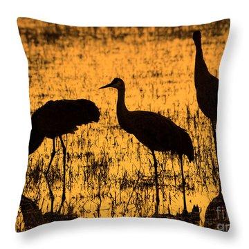 Sandhill Crane Silhouette Throw Pillow