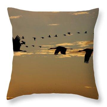 Sandhill Cranes At Sunset Throw Pillow