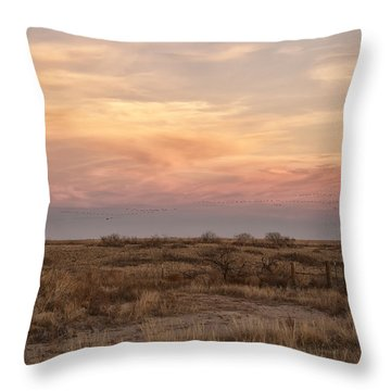 Sandhill Cranes At Sunset Throw Pillow by Melany Sarafis