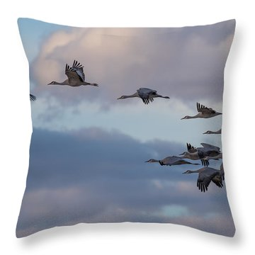 Sandhill Cranes Throw Pillow by Beverly Parks