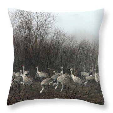 Sandhill Cranes In The Fog Throw Pillow by Farol Tomson